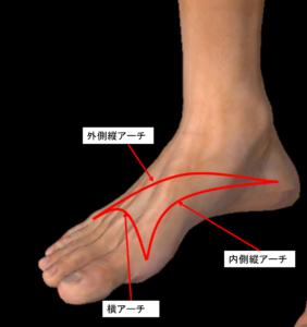 足のアーチの図